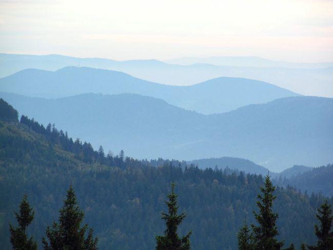Blackforest Germany