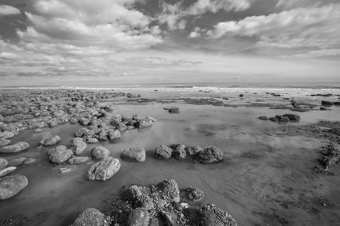 Sea view at low tide of Pett Level cliff end exposing rock formations covered with sea life growth and the emains of ancient forest Ancient Ancient Forest Buried By Sea Black & White Clouds And Sky Coastline Horizon Over Water Nature_collection Nature_perfection Puddles Rocky Coastline Sandbeach Sandstone Cliffs Sea And Sky Sea Life Seascape Seaside_collection Strange Rockformations