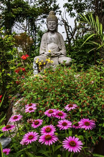 Statue of flowering plants against trees