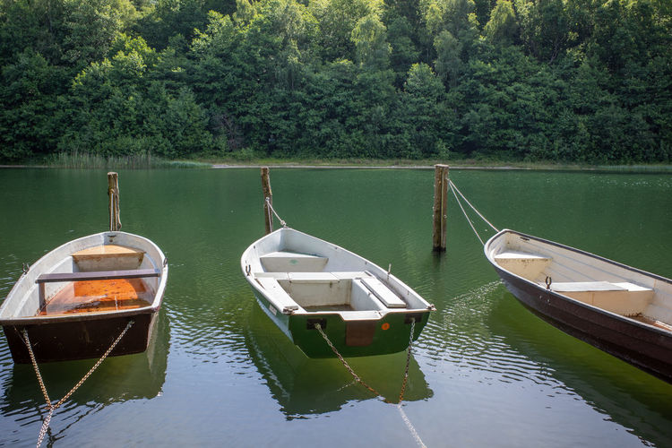 Boats moored on lake by trees