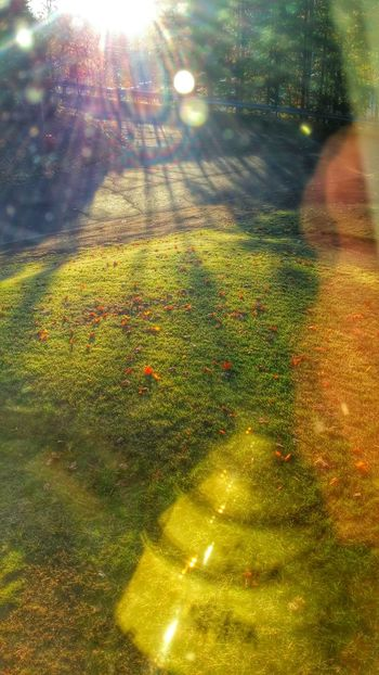 This Morning. Morning Light Creative Light And Shadow Tranquil Scene Autumn Reflection High Angle View No People Personal Perspective Creative Photography Enjoying Life Smartphonephotography