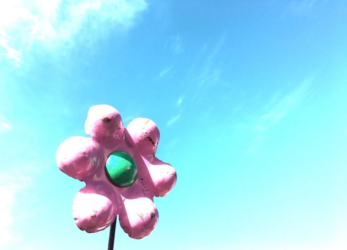 Taking Photos Check This Out Hello World Enjoying Life IPhoneography Flowers, Nature And Beauty Flowers Pink Flower Pink Color Pastel Power Pastels Pastel Colors Pastel Metalsculpture Blue Sky Blue Wave Blue