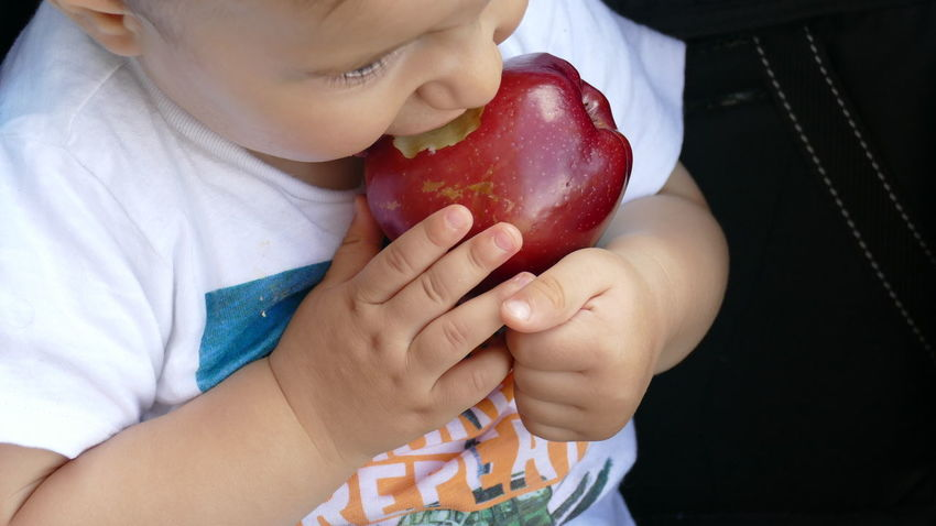 Apple Apple - Fruit Apple With Kid Childhood Close-up Day Eating Food Food And Drink Freshness Fruit Healthy Eating Holding Human Hand Indoors  Kid Hand  Lifestyles One Person People Real People Red Sitting