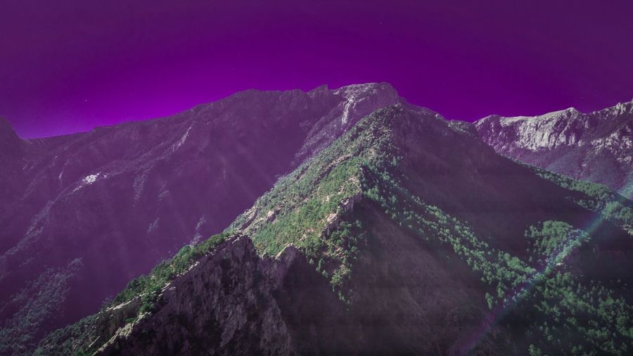 Mountain Mountain Scenics - Nature Beauty In Nature Sky Nature Environment Purple Tranquil Scene Plant Growth Tranquility Tree No People Landscape Land Low Angle View Mountain Range Non-urban Scene Outdoors Idyllic