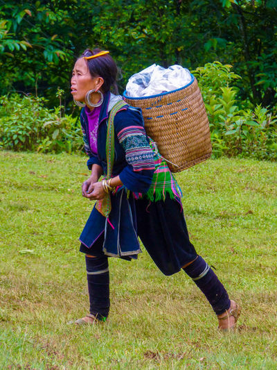 Sapa, Lao Cai Province, Vietnam - July 18, 2013: Hmong woman during a trek in Sapa rice field, Lao Cai Province, North of Vietnam ASIA Asian  Clothes Colored Culture Day East Field Grass Hanoi Hmong Lào Cai Mature Adult Mountains Nature North Outdoors Person Sapa Traditional Trek Tribe Vietnam Woman Working