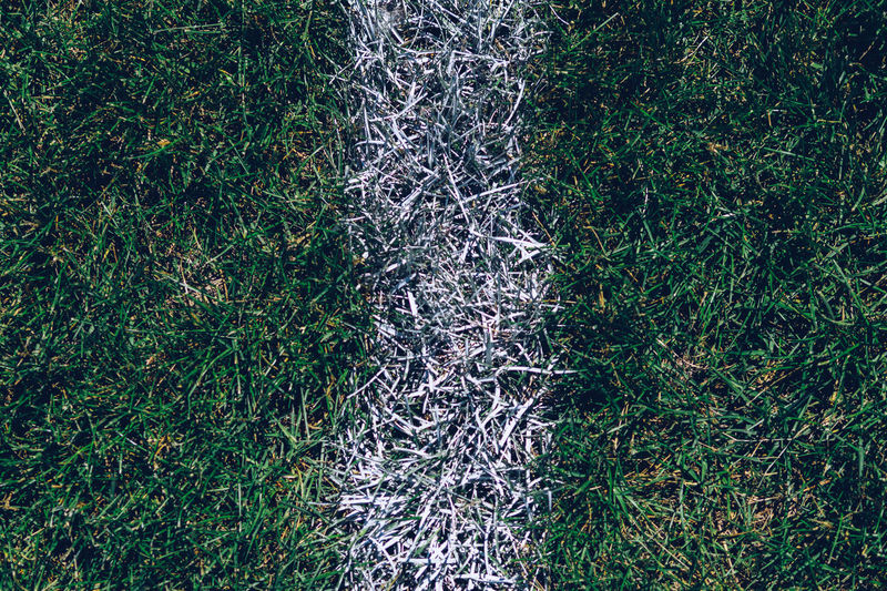 Close-up of dividing line on soccer field