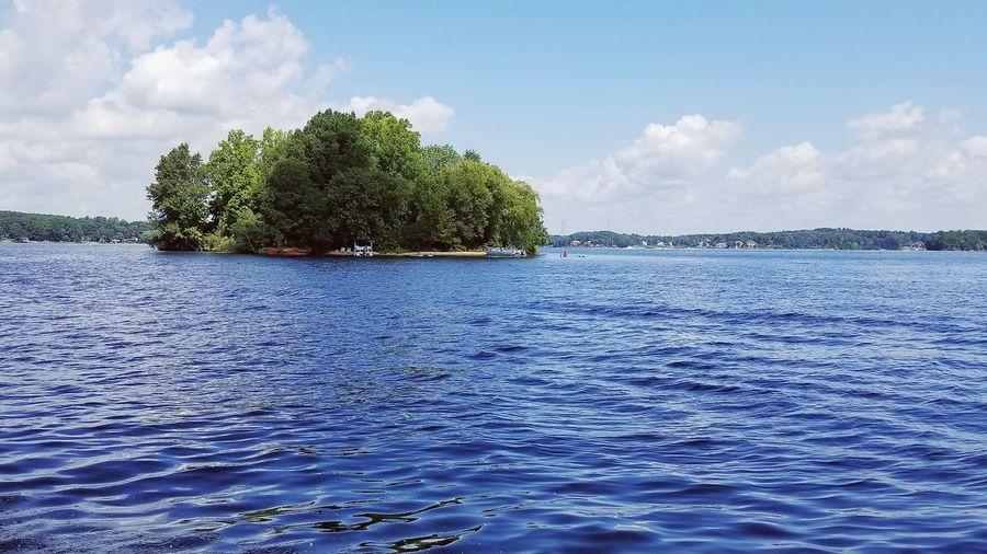 Lake Norman Lake Norman, NC, USA Lake Island Trees Nature Growth Tree Water Blue Summer