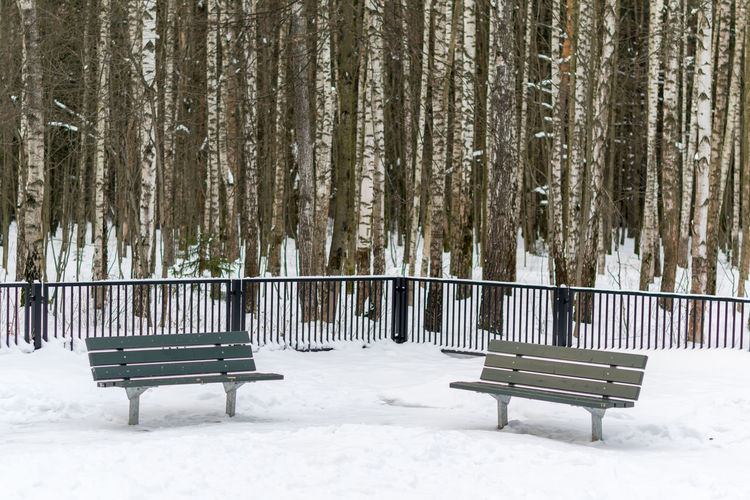 Empty benches on snow covered landscape