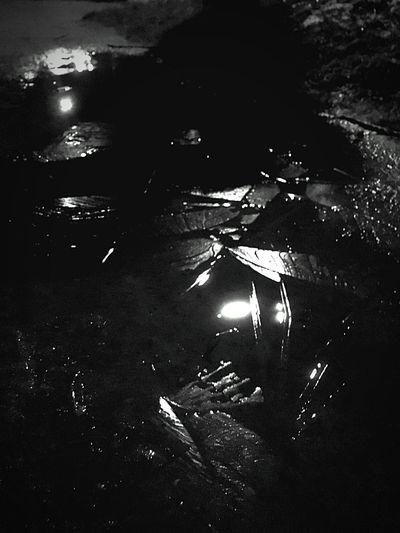 Pfütze Vereist High Angle View Water Night Outdoors No People Nature Illuminated Inner Power
