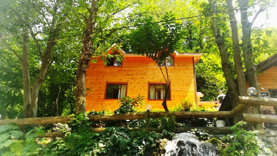 House Yellow Green Forest EyeEm Nature Lover EyeEm Best Shots Day Garden Tree Front Or Back Yard Architecture Building Exterior Built Structure Plant Domestic Garden Traditional Building Balcony Roof Tile Building Rooftop Tree Trunk Tiled Roof  Residential Structure Growing Residential Building The Great Outdoors - 2018 EyeEm Awards The Traveler - 2018 EyeEm Awards The Architect - 2018 EyeEm Awards The Photojournalist - 2018 EyeEm Awards