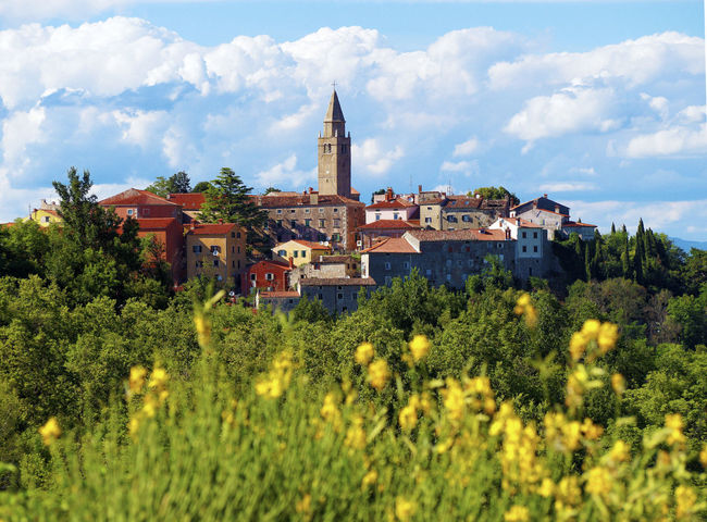 City of Labin Europe Istria Croatia Architecture Blossoms  City Cloud - Sky Croatia Europe Hostorical Istria Labin Landscape Landscapes Medieval No People No People, Outdoors Point Of Interest Summer Tourism Travel Travel Destinations Village White Clouds Yellow