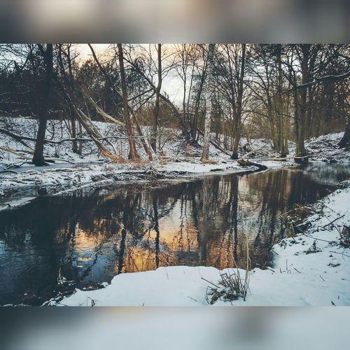 Pięknie ;) Winter Green_winter Beutiful  Best Friends Jeziorko Lake Bierzewice Polska Poland