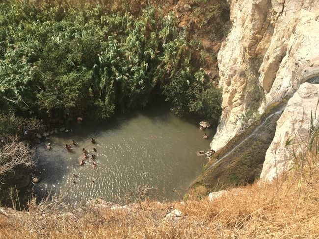 Nature Water Plant High Angle View River Tree Day Outdoors Beauty In Nature Scenics Large Group Of People Grass People