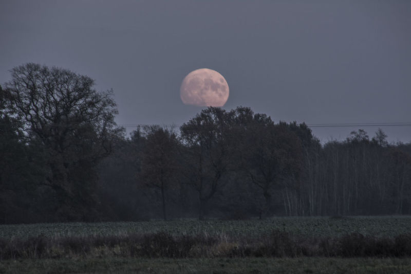 2016 Czerwiensk Evening Landscape Moon Moon Surface Night Poland Supermmoon