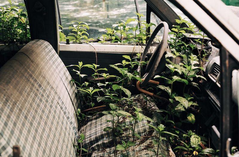 Close-up of abandoned vehicle
