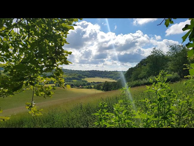 English countryside ,Oxfordshire Nature