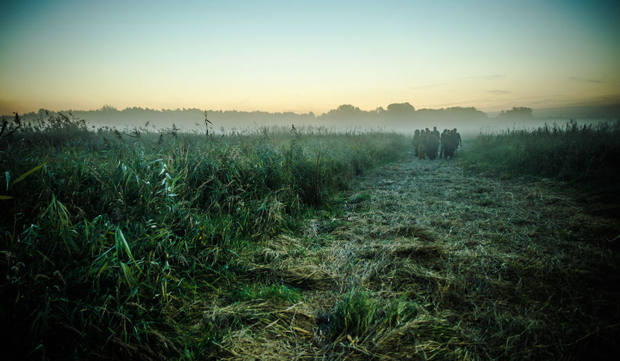 Plötzlich im Nebel Agriculture Beauty In Nature Copy Space Farm Field Grass Grassy Growth Horizon Over Land Idyllic Landscape Nature Non-urban Scene People Fog Foggy Fest Plant Rural Scene Scenics Sky Sunset Tranquil Scene Tranquility First Eyeem Photo