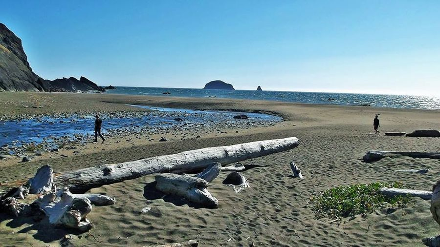 Beach Beauty In Nature Clear Sky Coastline Day Driftwood Horizon Over Water Nature Non-urban Scene Outdoors Sand Sandy Scenics Sea Shore Sky Summer Tourism Tranquil Scene Nature Photography Travel Photography Oceans New Perspectives Streams HDR