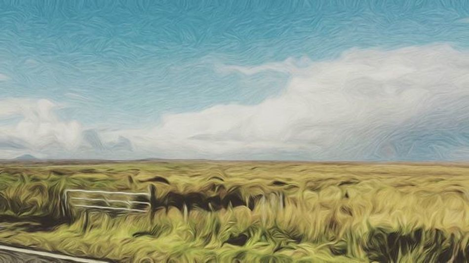 Sky⛅ Sky Clouds Landscape Skylovers Bluesky Cloudstagram Beautiful Cloudporn Skyporn Air Grass Blue White Ic_skies Beauty Global_sky Skysnappers Skieshunter Igworldsky Thebestskyever Iskyhub Cloudwhisperers Photowall_sky Sky_captures Naturegram skylines skyview instadaily horizon amazing