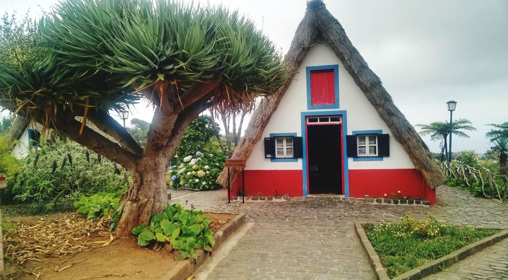 Madeira Island Santana Built Structure Building Exterior Architecture Tree Outdoors No People Red