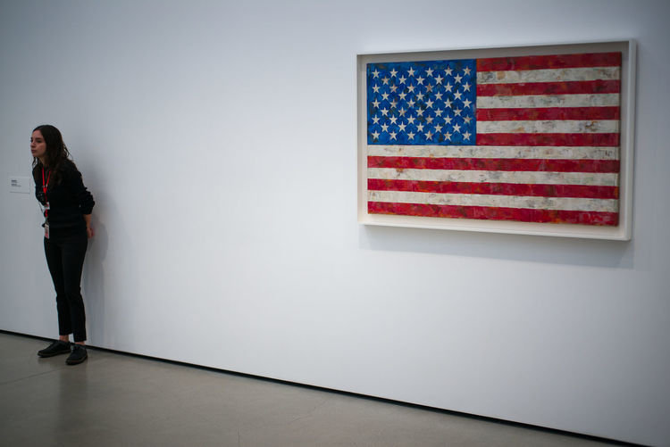 Jasper Johns at The Broad, Los Angeles Flag Jasper Johns Landscape Los Angeles, California Museum Painting People The Broad Woman