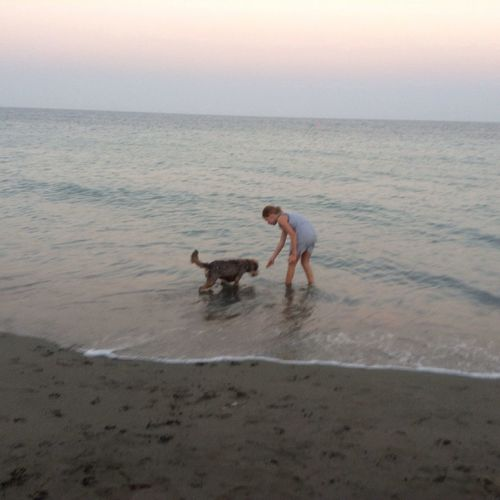 On the beach with dog