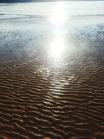 Ocean Sea Enjoying The Light Sunset