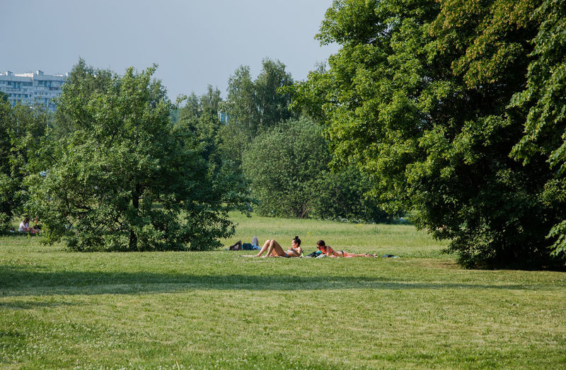 a group of people tan in the Park Plant Tree Grass Green Color Nature Growth Day Land Field Group Of People Sky Beauty In Nature People Outdoors Togetherness Friendship Sunlight Leisure Activity Men Tranquility