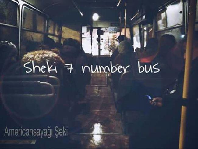 Sheki ^_^