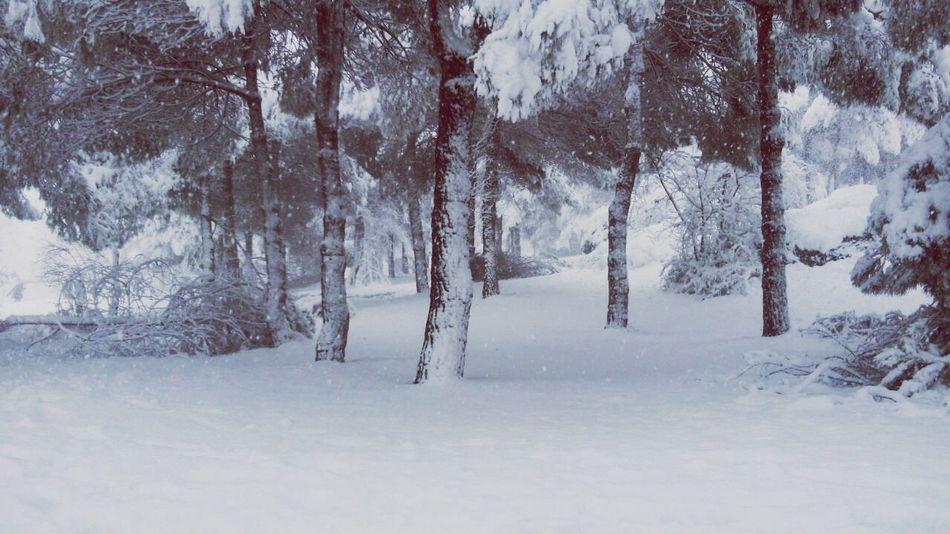 Kar, yağmak için eve gelmemi beklemiş❄️⛄️ Trabzon Ktu Snow EyeEm Vscogood Vscocam Best  Relaxing