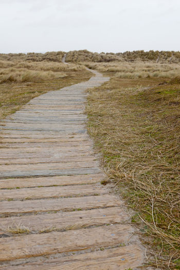 Dunes Leading The Way Perspective Beach Boards Day Grass Journey Landscape Nature Outdoors Pathway Sand Dunes Sky The Way Forward Walkway Way Ahead Where Does It Go Where Does It Lead?