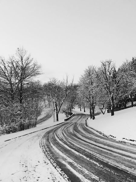 Cold Temperature Snow Tree Winter Nature The Way Forward Bare Tree Clear Sky Road Day Outdoors Transportation Scenics Tranquility Beauty In Nature Landscape No People Sky White