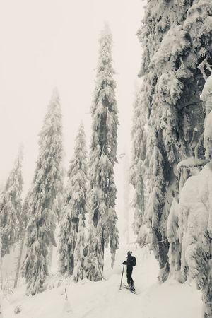 black & snow Winter Wonderland Skitourengeher Skitouring Skiing Skitouring Snow Tree Cold Temperature Winter Real People Plant Leisure Activity One Person Nature Sport Lifestyles Mountain Warm Clothing