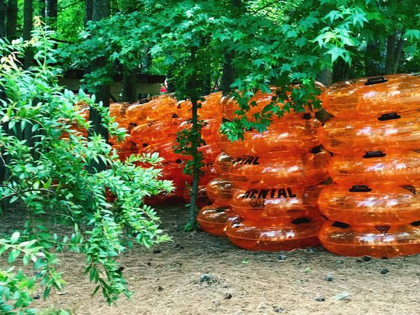 Time for river tubing . No People Orange Color Nature Trees Forest Tubes River Tubes Leisure Activity Rural Scene Group Of Objects