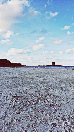 Stintino Sea Sardinia Beatit