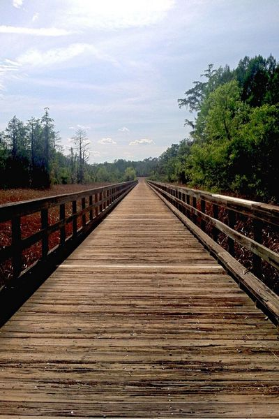 Bridge Hiking Phinizy Trees Hello World Beautiful Clouds And Sky