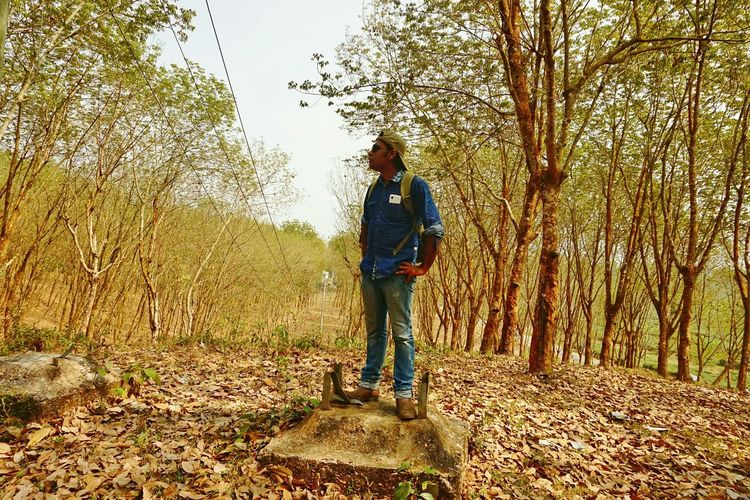 How Do We Build The World? Fallen Leaves How Do You See Climate Change? LifeLess Climate Change(global Warming) Fall_collection Climate Change Sony A6000 Global Warming Is Real Human Vs Nature Fading Beauty Rainless Damaged Trees Damaged Nature Dispair Conceptual Conceptual Photography  Jeans Hilly Area Sublime Living Leading Lines Landscape With Whitewall Srimangal, Moulavibazar, Bangladesh