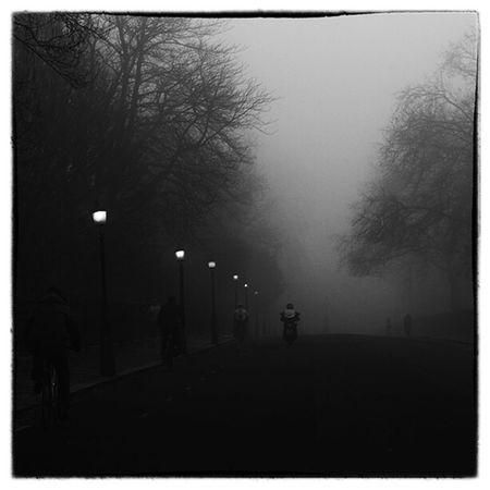 Foggy Morning Fujifilm X-Pro1 My Winter Favorites Taking Photos Foggy Morning Black & White Capture The Moment Streetphoto_bw Lostamongstthelost