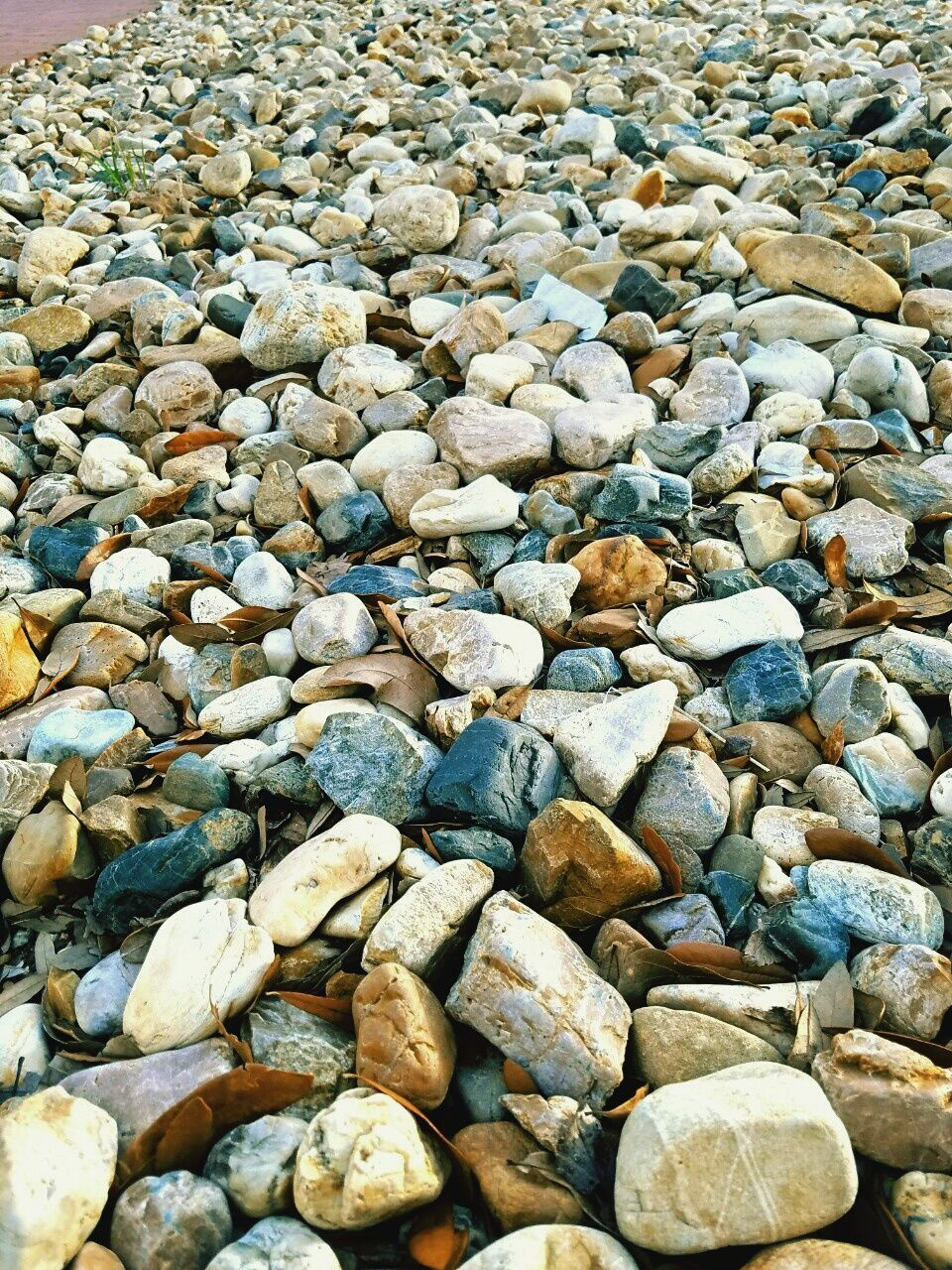 pebble, pebble beach, shore, stone - object, beach, nature, full frame, rock - object, large group of objects, abundance, no people, backgrounds, outdoors, day, beauty in nature, water, close-up