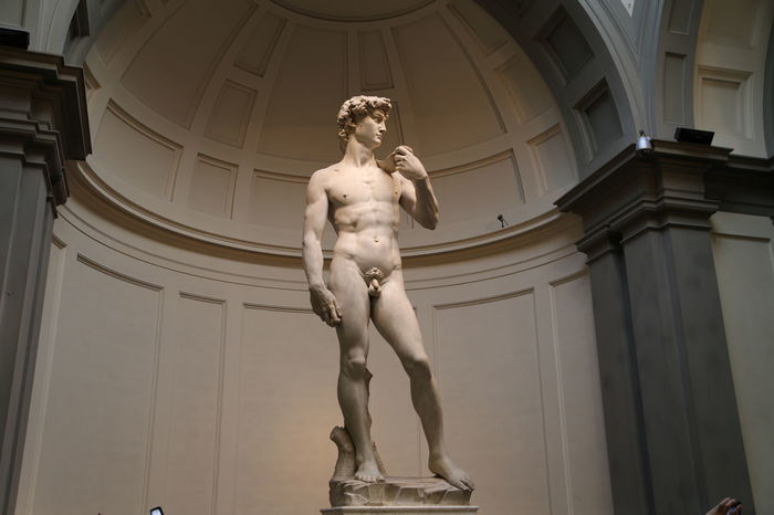 David Florence Italy Accademia Architectural Column Architecture Art And Craft Built Structure Creativity Day History Human Representation Indoors  Low Angle View Male Likeness Michelangelo's David Museum No People Renaissance Sculpture Statue Travel Destinations