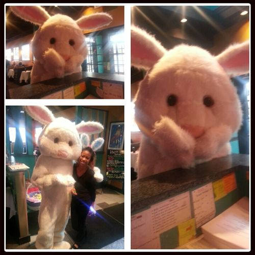 work!!!!!!Easter Bunny At Big Fish Grille Today Free Candy And Pics Yayyy