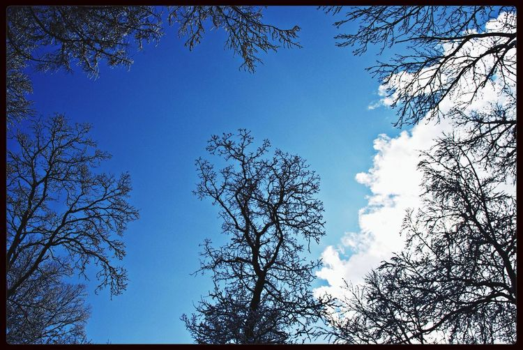 Sky_collection Landscape Nature Salzgitter