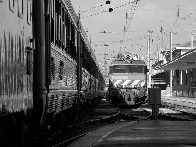 City Life Connection Diminishing Perspective Empty In A Row Incidental People Leading Mode Of Transport Narrow Passenger Train Public Transport Public Transportation Rail Transportation Railroad Station Railroad Station Platform Railroad Track The Way Forward Train Train - Vehicle Transportation