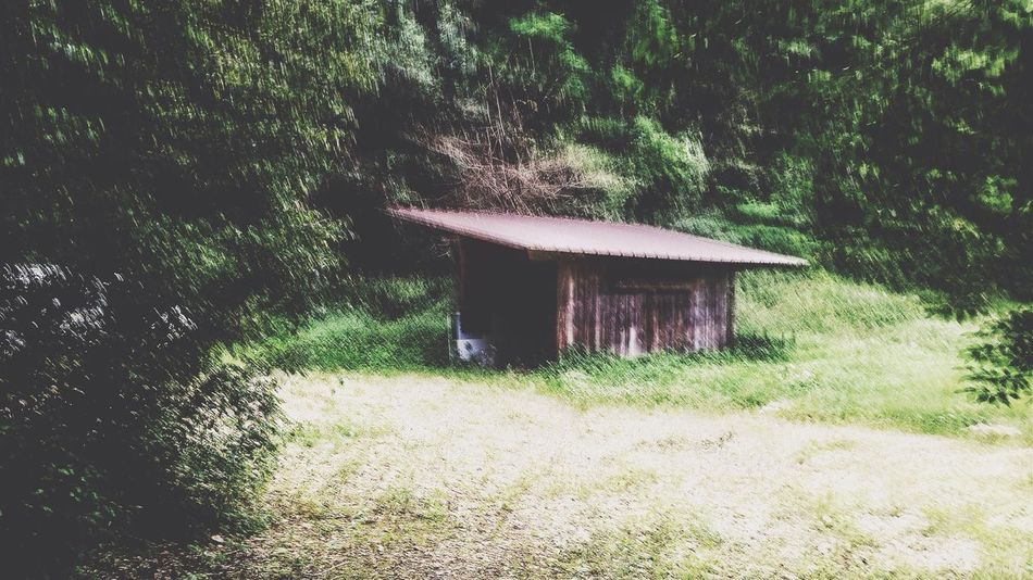 Pivotal Ideas In To The Woods Creapy House Bugey Alone In The World Dream IPhoneography French Country Walking In The Forest !