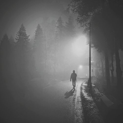 man alone Fog Adults Only Only Men People Adult One Man Only Tree Forest Outdoors