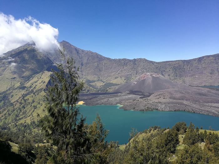 Volcano, lake at Mount Rinjani Tree Water Mountain Lake Blue Pinaceae Volcano Sky Mountain Range Landscape Volcanic Landscape Active Volcano Pine Woodland Pine Tree Geology Volcanic Activity Physical Geography Evergreen Tree