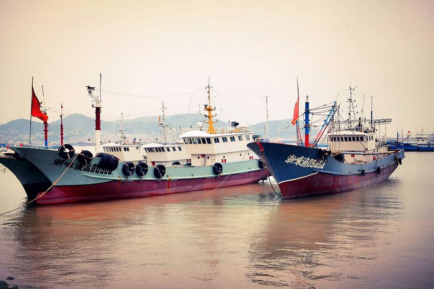 My City Sea_collection Seaside Shengsi Lightroom Hello World Boat Trip Fishing Boat Going On A Boat Ride Boats⛵️