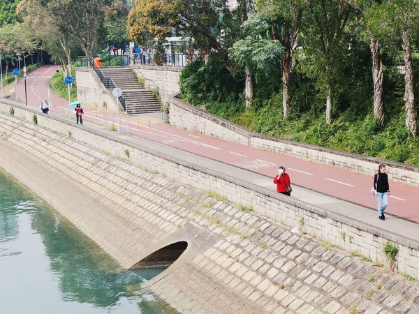 HongKong TaiPo Daily Bicycle River Quiet Moments Stories From The City
