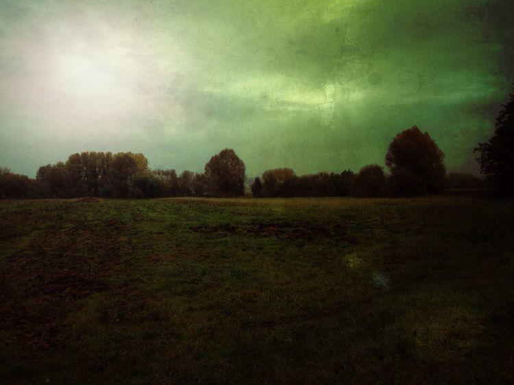 Emerald coldness Stenkas Secret Lands Stenkas Colored World Forest Woods Emerald Coldness Emerald Coldness