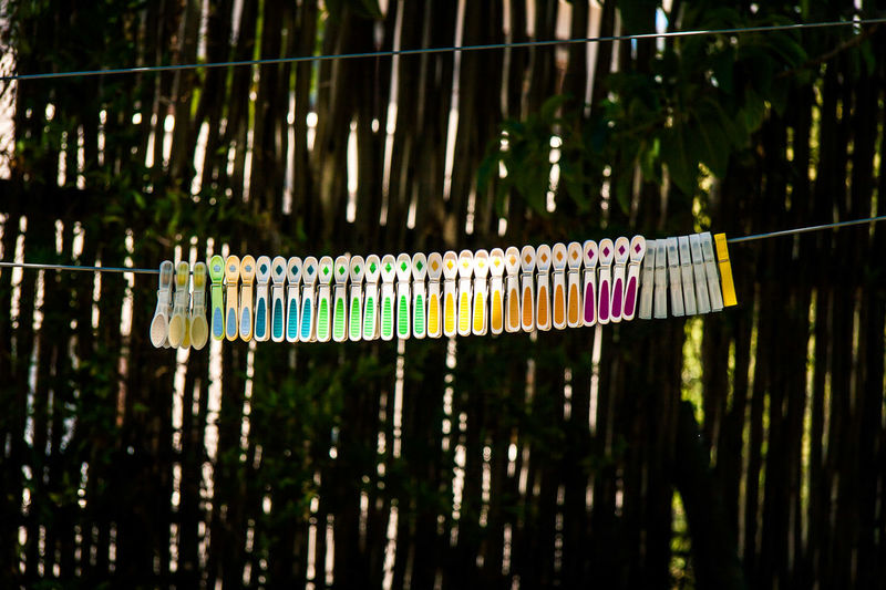 Clip Close-up Colour Of Life Day Focus On Foreground Hanging Laundry Pegs No People Ocd Order Outdoors Things Arranged Neatly Washing Line Washing Pegs